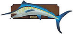 Blue Marlin Fish Wall Decor