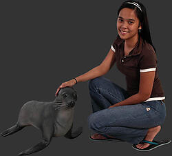 Baby Fur Seal 2FT Life Size Statue