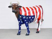 American Flag Cow