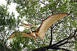 Pterodactyl Flying Dinosaur Statue Hanging Pteranodon 25 FT