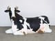 COW LYING - LIFE SIZE COW