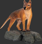 Tasmanian Tiger - Animal Statue